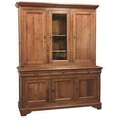 Antique French Louis Philippe Cherrywood Bookcase