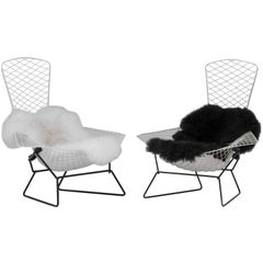 Pair of Bird Chairs by Harry Bertoia for Knoll, 1960s, USA