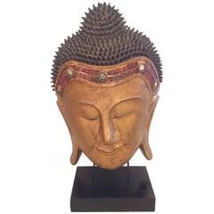 Very Large Dramatic Buddha Head