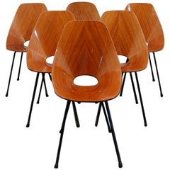 Medea Set of Chairs by Vittorio Nobili