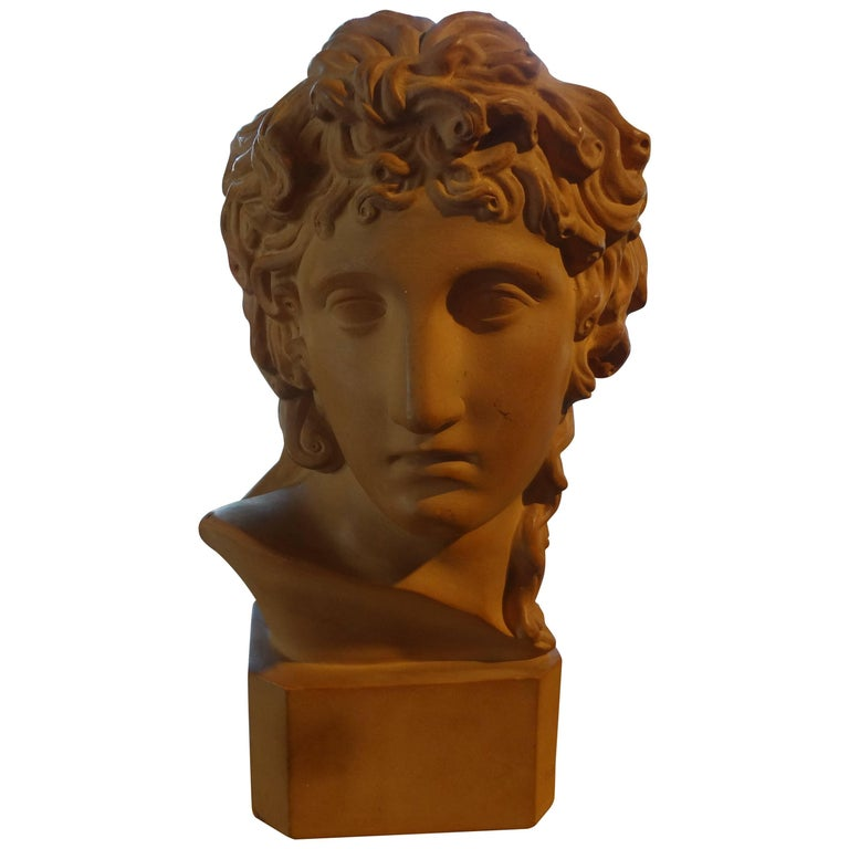 French Classical Terra Cotta Bust Signed R. D'Arly, Paris For Sale