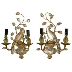 Maison Baguès Pair of Parrot Sconces, 1960