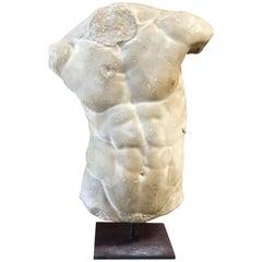 Gaddi's Torso, Plaster Bust, Copy in Scale 1/1