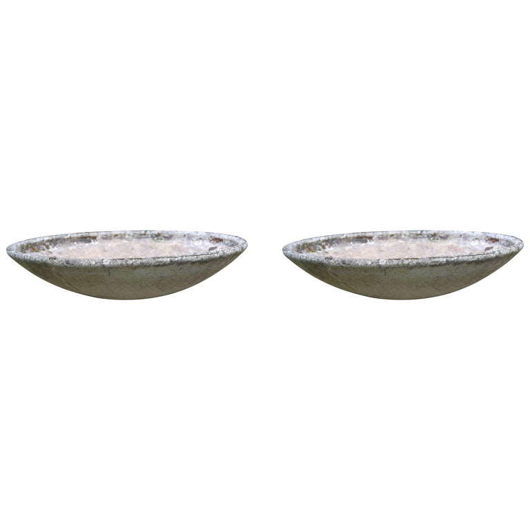 Pair of Extra Large Willy Guhl Saucer Planters For Sale