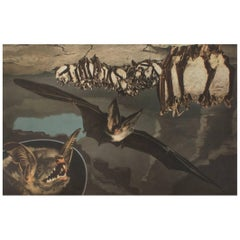 Original School Wall Chart with Bats