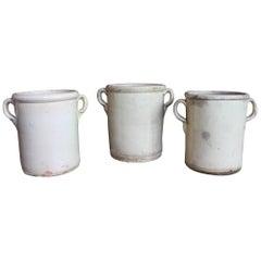 Three Sardine Pots