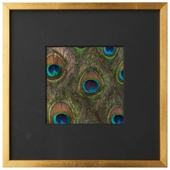 Schumacher Custom Hand-Applied Natural Peacock Feathers Panel Gold Framed