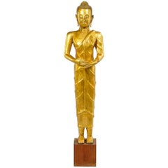"Important Tall Antique Gold Gilt Bronze  Buddha, 60"" high with Provenance"