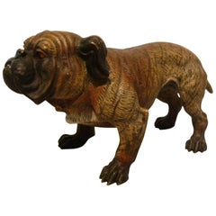 Antique Large Dog Cold Painted Vienna Bronze English Bulldog Sculpture