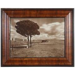 Italian Landscape Photograph,  Early 1900s Roman Aqueduct, Acueducto Romano