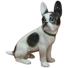 Early 20th Century Porcelain French Bulldog, Boston Terrier Figurine