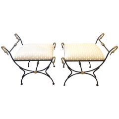 Pair of Iron and Brass Swan Motife Bench Ottomans