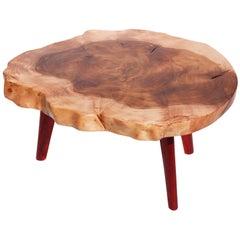 Unique Ash Padouk Table by Jörg Pietschmann