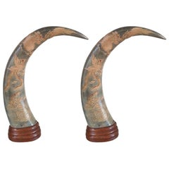 Pair of Mounted Horns, 1940's
