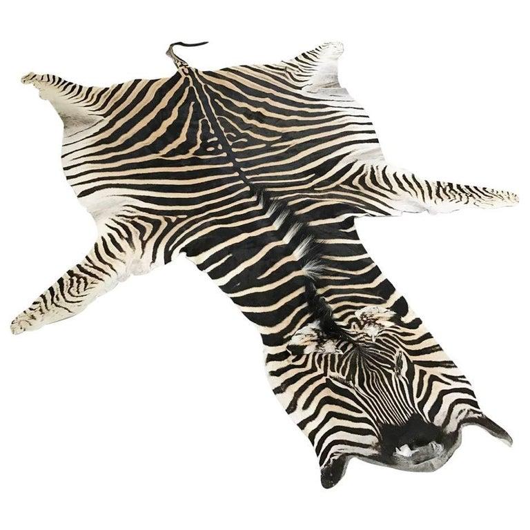 Zebra Hide Rug For Sale