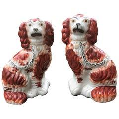 Pair of English Staffordshire Spaniels