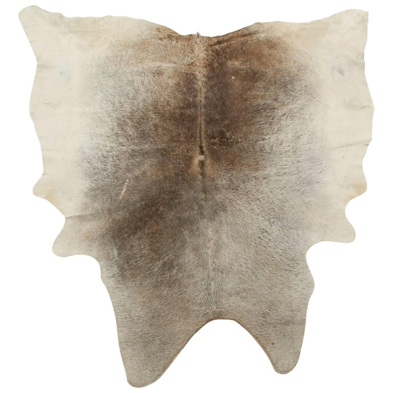 Cow Hide Rug, Offered by Area ID 1