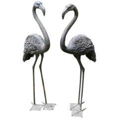 Pair of English Bronze Flamingoes