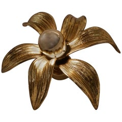 Brass Flower Wall Light, 'Massive Lighting', circa 1970s, Belgian