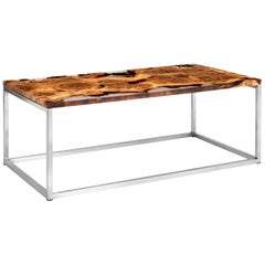 Contemporary Coffee Table in Oak Burr and Resin on Brushed Stainless Steel Base