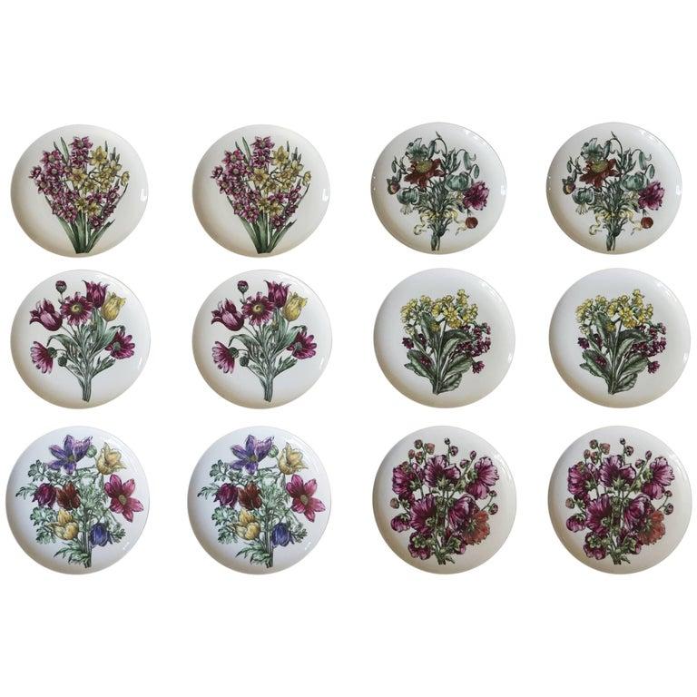 Fornasetti Milano 'Fiori' Pattern Porcelain Plates, Set of Twelve, circa 1965 For Sale