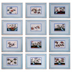 China Trade Set of 12 Pith Paper Paintings of Birds, circa 1840-1860