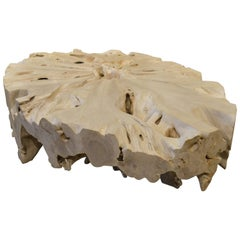 Andrianna Shamaris St. Barts Teak Wood Coffee Table