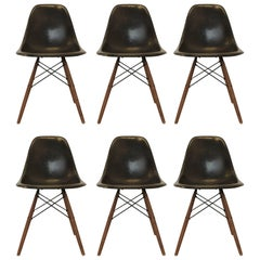 Black Fiberglass Eames Chairs by Herman Miller