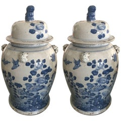 Pair of Large Chinese Blue and White Lidded Urns