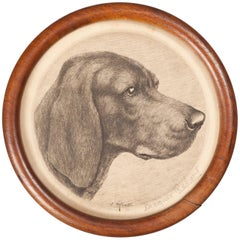 Early 20th Century Framed Etching, Portrait of a Weimaraner by Jacques Rebaut