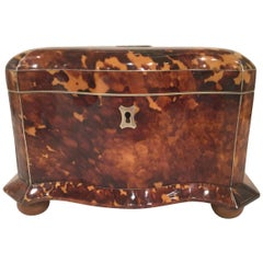 19th Century Tortoiseshell Tea Caddy