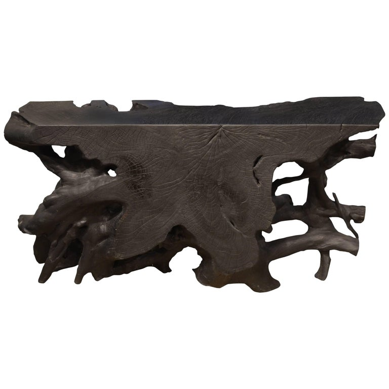 Andrianna Shamaris Charred Teak Wood Console or Coffee Table
