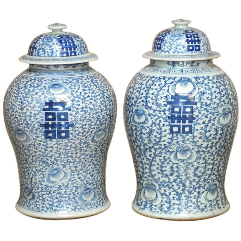 Pair of Chinese Blue and White Porcelain Ginger Jar Vases