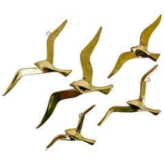 Five Wall-Mounted Midcentury Seagull Bird Brass Sculptures, Austria, 1950s