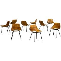 Set of Nine French Chair Pierre Guariche Model Tonneau for Steiner Design