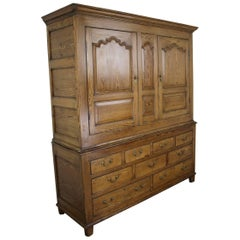 Spectacular 18th Century Welsh Pine Cupboard