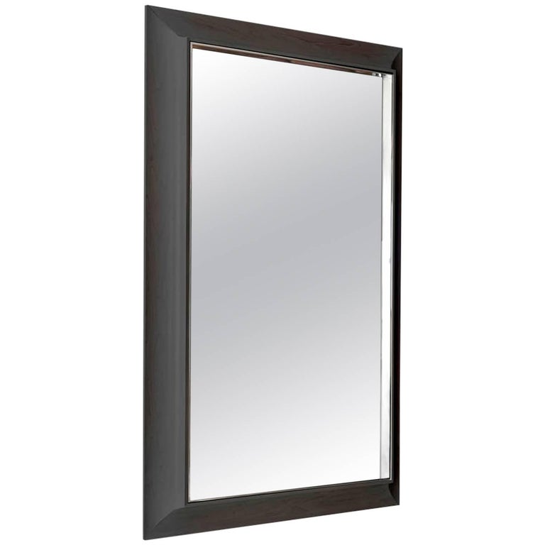 Zamora Mirror With Polished Stainless Steel And Ebonized Gany Frame