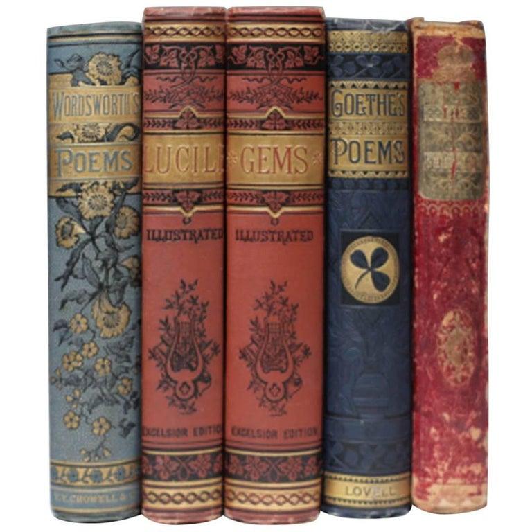 19th Century Set of Books, circa 1860s For Sale