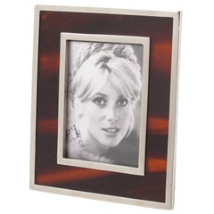 Tortoiseshell Lucite and Chrome Picture Photo Frame, circa 1970s