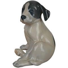 Royal Copenhagen Porcelain Pointer Puppy Dog by Erik Nielsen , Denmark , 1960s