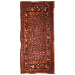 19th Century Antique Turkmen Ersari Rug Small