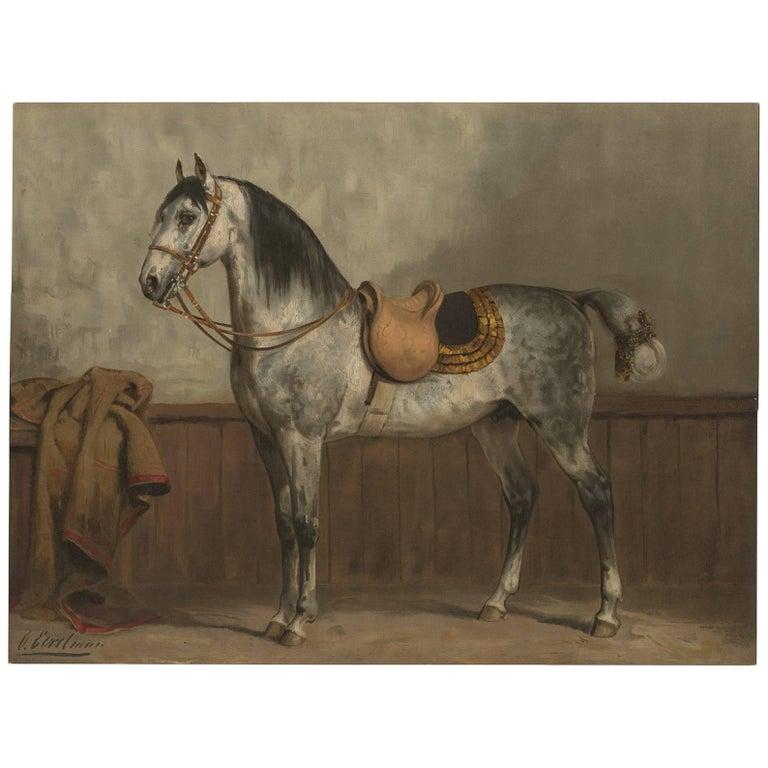 Antique Horse Print Of A Lippizaner Horse By O Eerelman