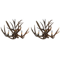 Handsome Pair of Vintage Antler Chandeliers