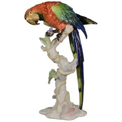 Large Ara Parrot Porcelain Figurine by Rosenthal Designed by F.Heidenreich, 1937