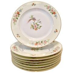 """1920s Porcelain """"Songbird"""" Dinner Plates, Bye H & C Bavaria, Set of Eight"""