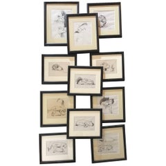 Paul Jouve period 12 Original french Drawing most of Lion by Raylambert ,1940