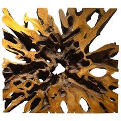 Impressive Teak Wood Root Art