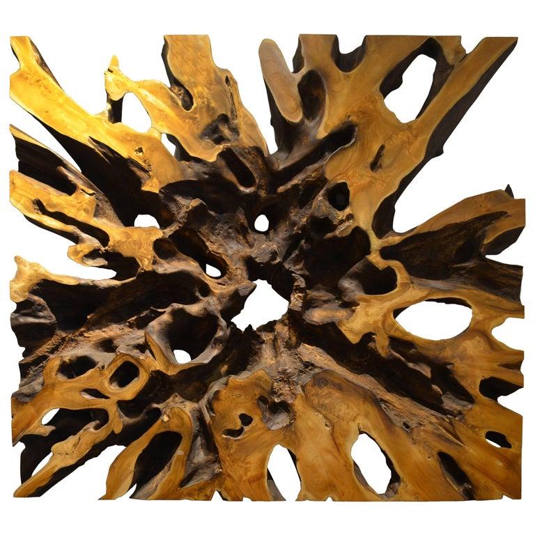 Andrianna Shamaris Impressive Teak Wood Root Art or Coffee Table