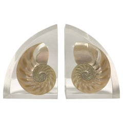 Pair of Lucite Bookends with Encased Nautilus Shell