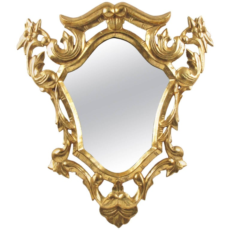 French Rococo Hand-Carved Giltwood Wall Mirror, circa 1920s